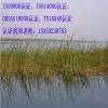 陕西ISO9001认证,陕西ISO9001认证